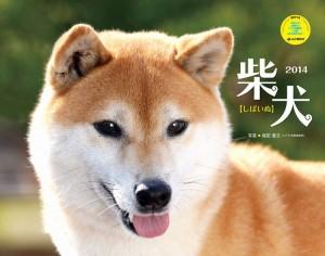 柴犬カレンダー