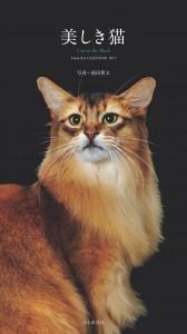 美しき猫(ヤマケイ)